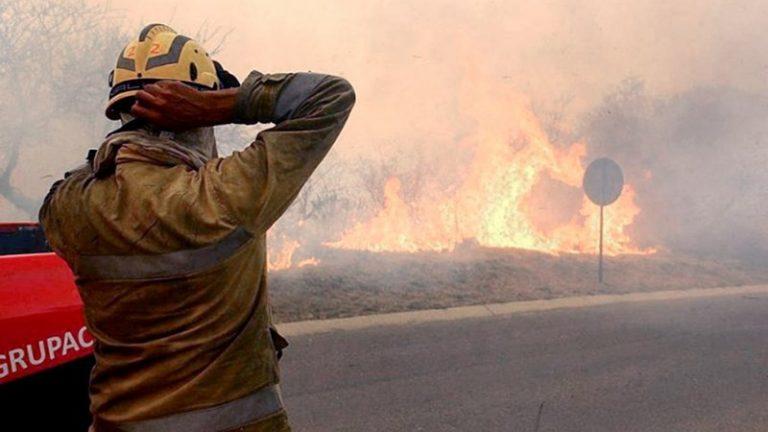Incendios, una tragedia ambiental con grandes pérdidas y pocos responsables