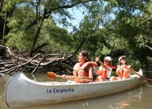 A REMO. La excursión guiada a bordo de canoas a lo argo del arroyo El Palmar es una experiencia inolvidable que permite un contacto único con el entorno selvático y su paso por el Parque Naconal El Palmar.