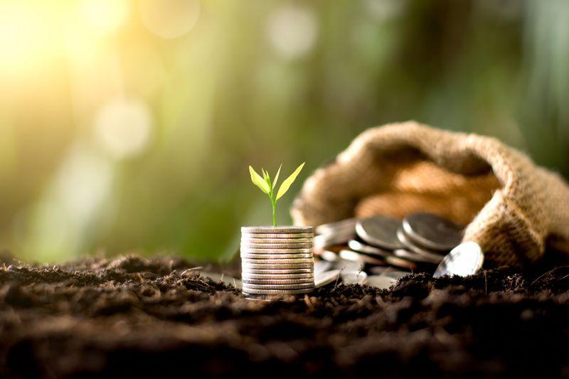 La inversión en emprendedores no se detiene y surgen nuevos sectores atractivos a los cuales apostar