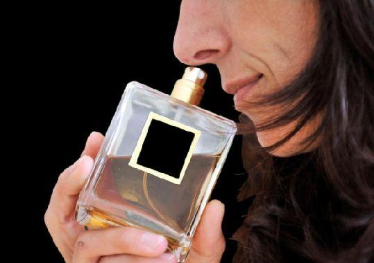Olores. Novedoso estudio sobre el olfato.
