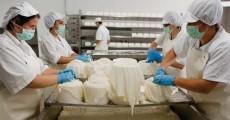 Los productos más demandados por los compradores extranjeros son leches y quesos.