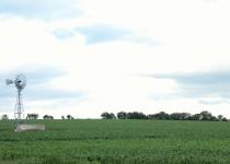 CAMPO. La actividad ganadera y la agrícola, entre las que más crecieron en el último año.