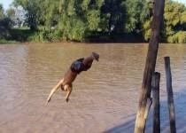 rio niño